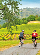 Backroads Wine Country Biking trips